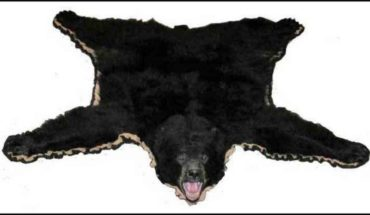 Bear Skin Rugs Faux