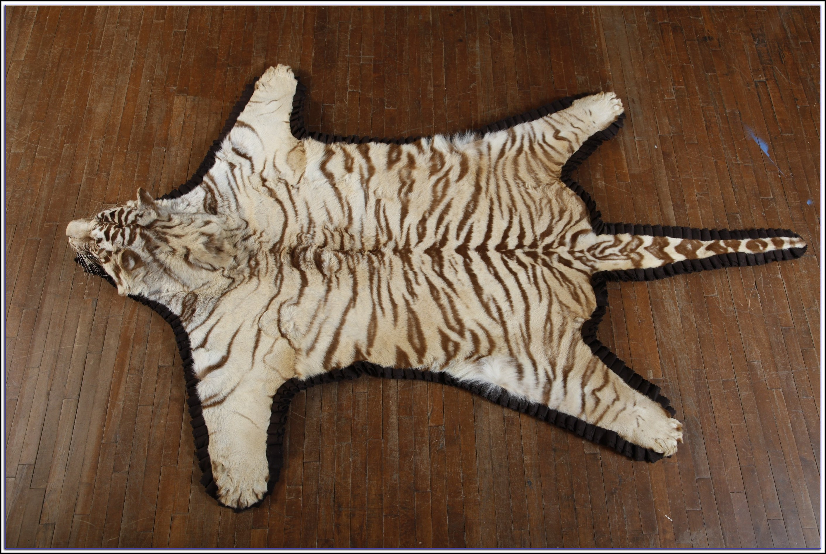 Fake Tiger Skin Rug With Head Rugs Home Decorating Ideas