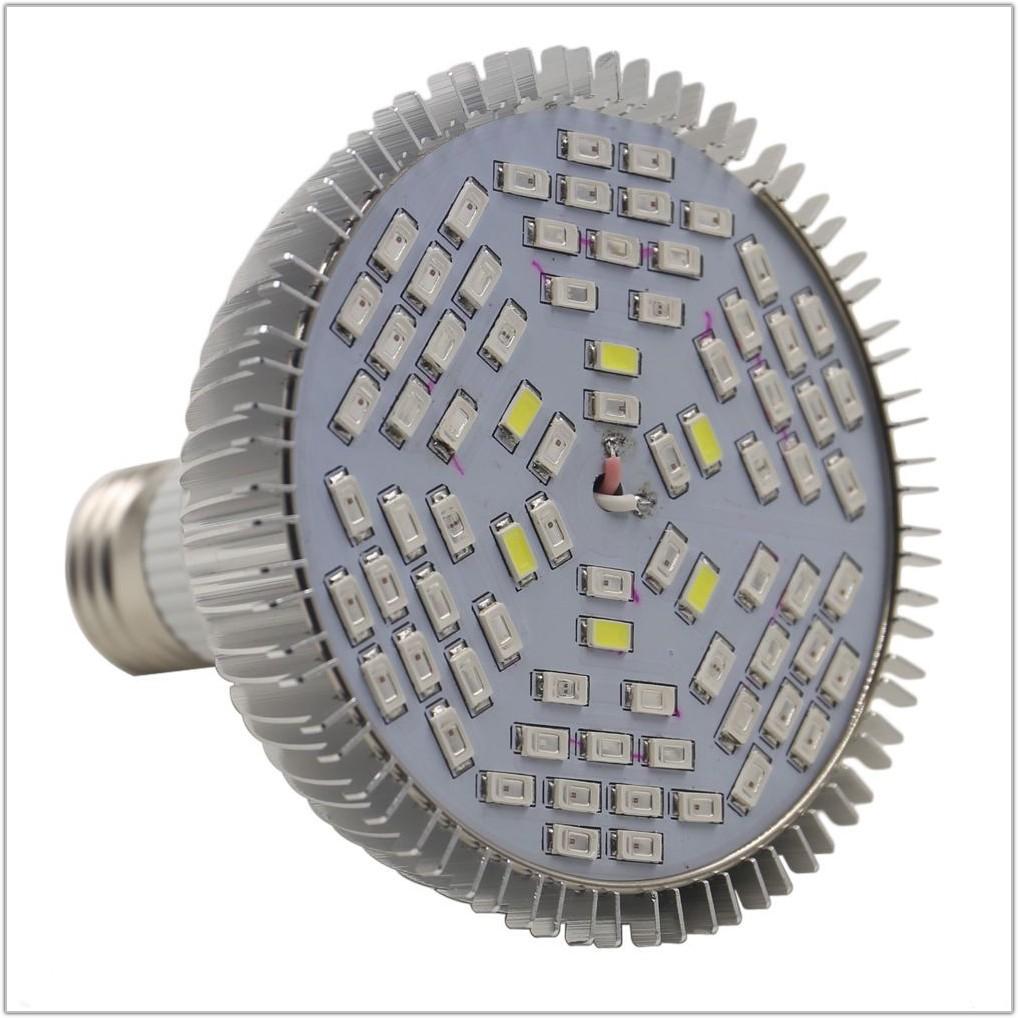 6 Lamp T5 Fixture Wiring