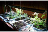 Grow Lights For Indoor Plants Walmart