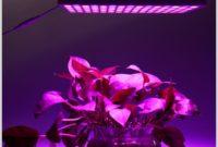 Heat Lamp For Indoor Plants