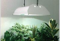 Indoor Grow Lamps For Plants