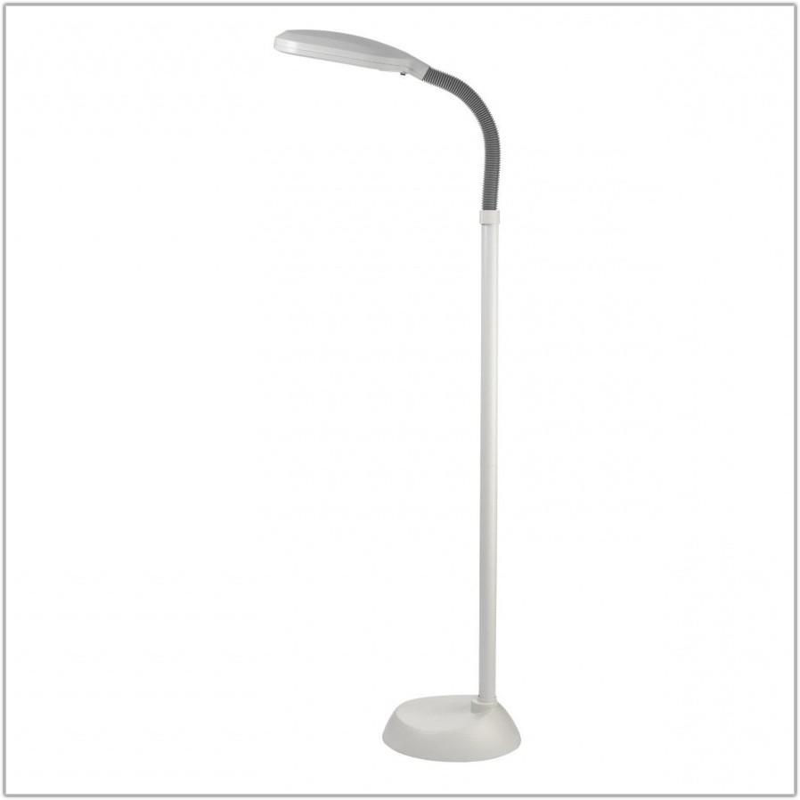 Natural Light Reading Floor Lamp