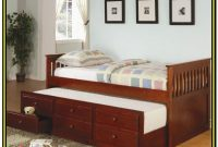 Coaster La Salle Daybed With Trundle And Storage Drawers