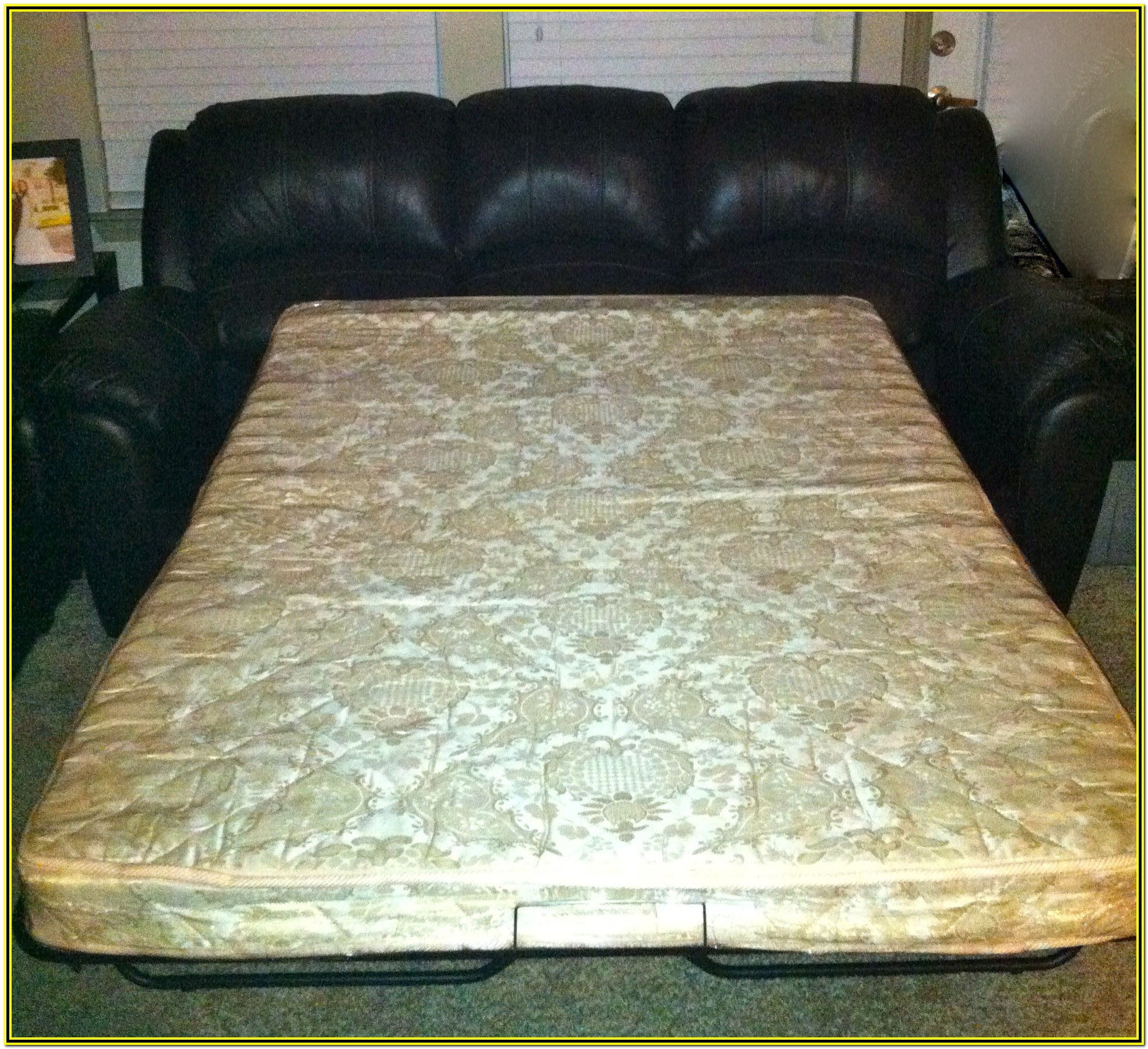 Leather Loveseat Pull Out Bed