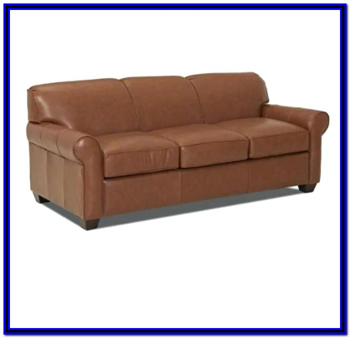 Leather Sectional Sofa With Pull Out Bed
