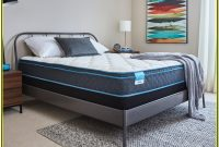 Mattress Firm Bed Frame Twin