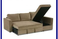 Sectional Couch Pull Out Bed