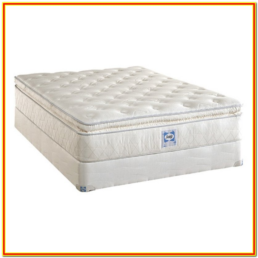 Mattress For Platform Bed Sealy Bedroom Home