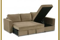 Sectional Sofa With Chaise And Pull Out Bed